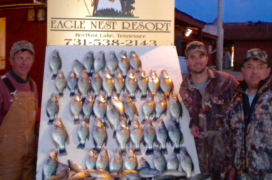Reelfoot Lake – Catch Me on the Water