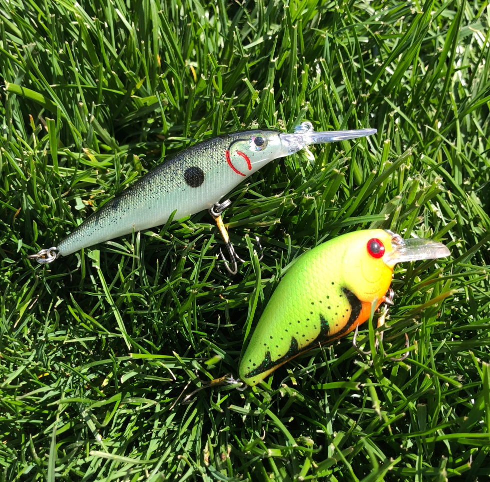 Hand Painted Crankbaits – Catch Me on the Water